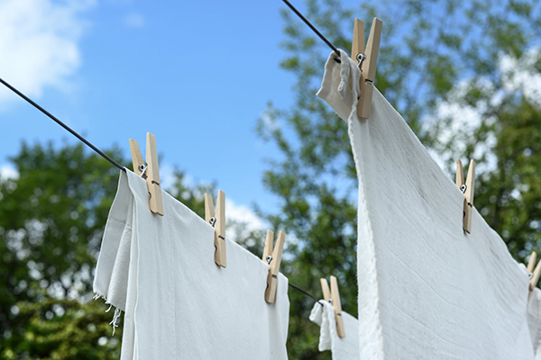 How To Remove Mold Stains From Clothing