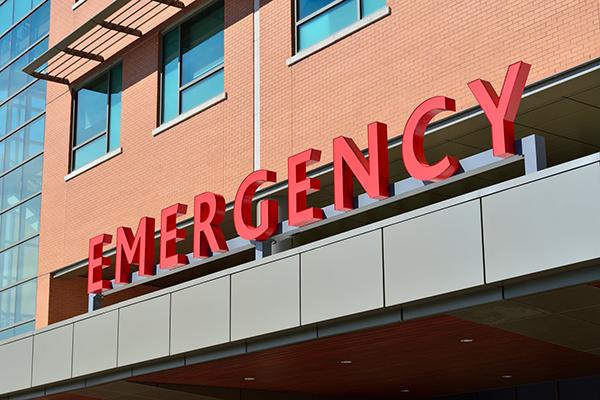 Eastern Equine Encephalitis Kills Three Americans
